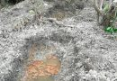 Investigan en Ixhuatlán del Sureste presunto campo de exterminio