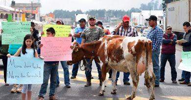 Lecheros Bloquean Carretera Xalapa Perote