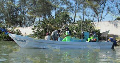 Aprueban Sanidad Ostión Tamiahua