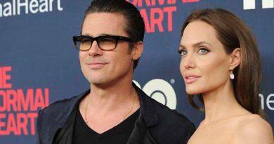 Angelina Jolie Brad Pitt Llegan Acuerdo Divorcio
