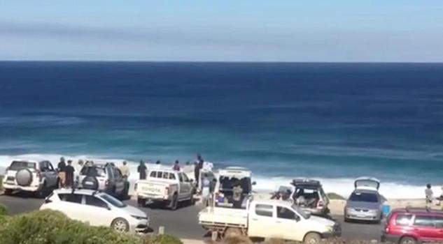 Ataque Tiburón Obliga Detener Campeonato Surf Australia