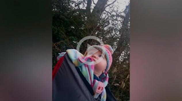 Bebé Primera Vez Bosque
