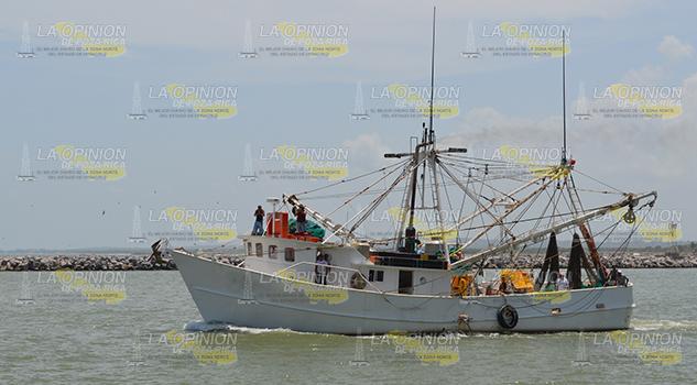 La Veda Camarón Hunde Pescadores