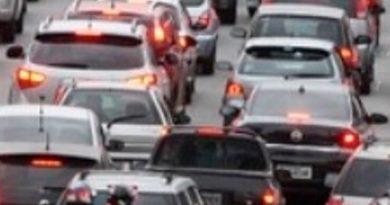 Llama Capufe Circular Precaución Sobre Autopista La Tinaja-Isla