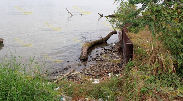 Río Pánuco Llegaría Viviendas Pueblo Viejo