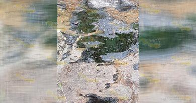 Desinterés de Pemex por contaminación
