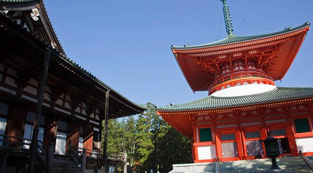 Monje Budista Japonés Demanda Templo Exceso Trabajo