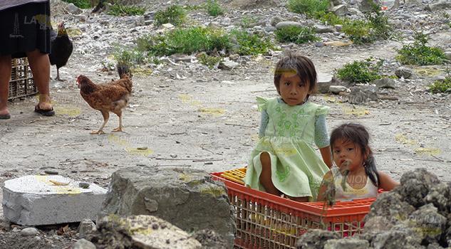Sufren Desnutrición Sierra Totonacapan