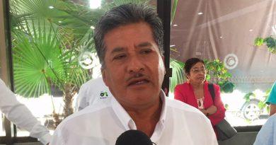 Bajo Precio Café Veracruzano Afecta Productores