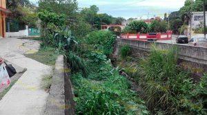 Canal Desfogue Obstruido Maleza Basura