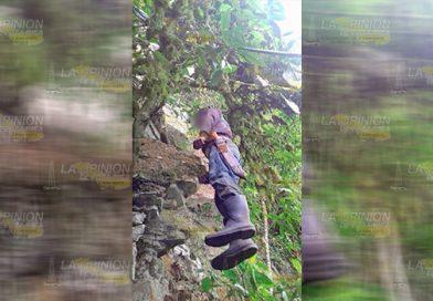 ¡Se ahorcó en un árbol! Jornalero escapa por la puerta falsa