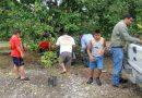 El buen uso del suelo y del agua, y del aprovechamiento de los árboles