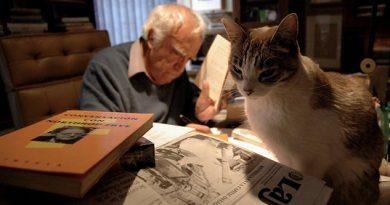 La vida de Carlos Monsiváis a través de… ¿sus gatos?