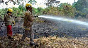 Cuerpo Bomberos Moviliza Incendio Tancoco