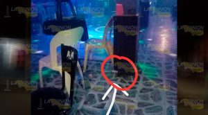 Detonan Artefacto Bar Tuxpan