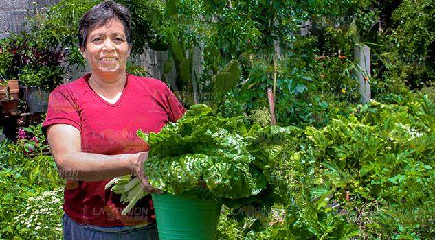 Familias Rurales Tuxpan Logran Sustento