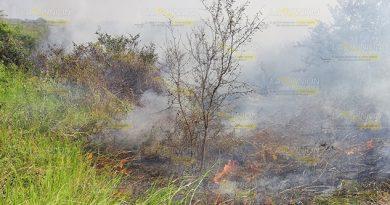 Incendio Consume 280 Hectáreas Tamiahua