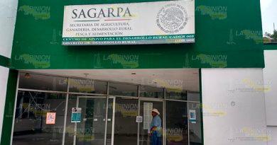 No Hay Gestores SAGARPA Tihuatlán
