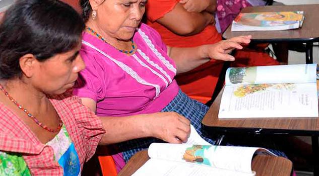Persiste Analfabetismo Zonas Rurales IVEA