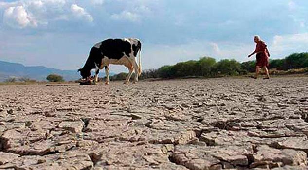 33 Municipios Sequía Daños 70% Cultivos