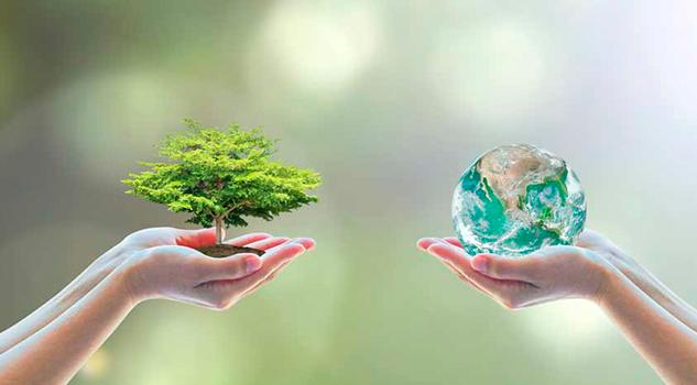 Ingenieros Veracruzanos Generan Vapor Limpio Pro Medio Ambiente