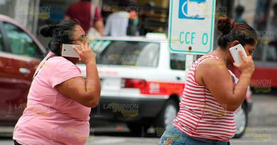 Urge Refugio Para Mujeres Poza Rica Agresores Requieren Terapia