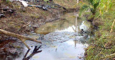 Imparable Contaminación Arroyo Los Tejones