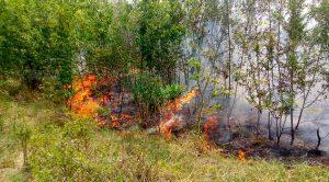 Incendio Sale Control Cerca Batería Pemex