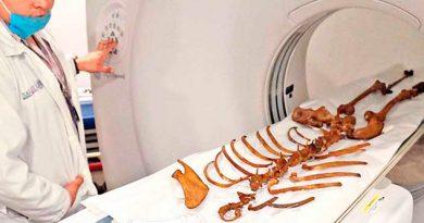 Naia Esqueleto Más Antiguo Que Calcinado Museo Brasil