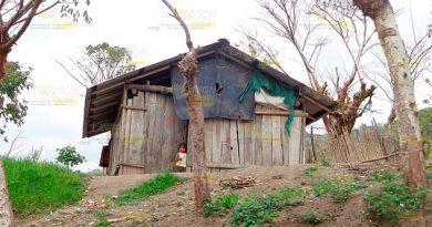 Niños Casos Desnutrición Sierra del Totonacapan