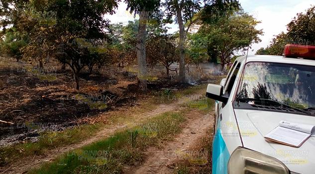 Ola Incendios Álamo Mantienen Alerta PC
