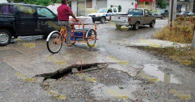Avenida de Álamo requiere rehabilitación integral