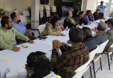 Cobra fuerza proyecto PEP para Poza Rica