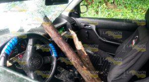 Estaca de árbol cae en parabrisas de automóvil