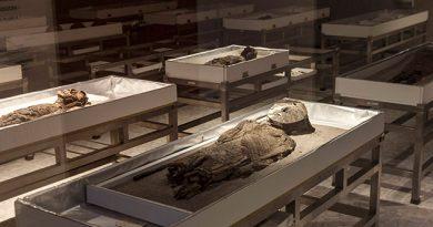 Las momias más antiguas del mundo