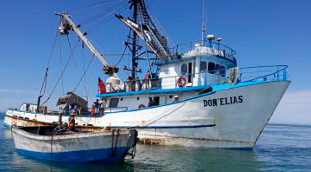 PROFEPA multa a barco sardinero por pesca ilegal en área protegida