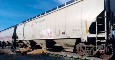 Rapiña Tren Puebla Saquean Furgones Cargados Trigo