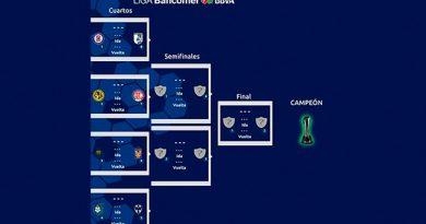 Definidos fechas y horarios de cuartos de final del Apertura 2018