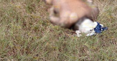 Identifican cuerpo hallado en naranjal en Tzocohuite