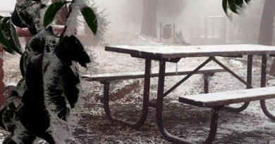 ¡Otra tormenta invernal! Prevén nevadas en estos estados de México