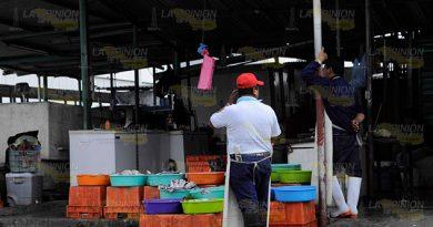 Alerta sanitaria, detectan venta de pescado insalubre en Poza Rica