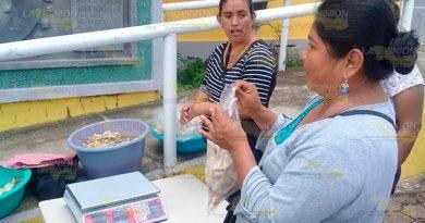 Cultivo de hongo seta, alternativa de subsistencia alimentaria en Tihuatlán