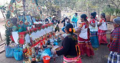 Inicia Festival Chicomexochitl en la comunidad de Aguacate Vinazco