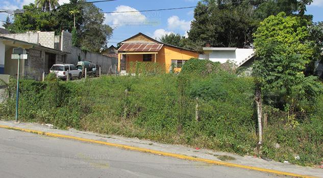 Lotes baldíos con maleza, riesgo para la salud y seguridad en Tihuatlán