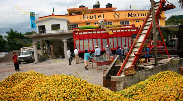 Pega huachicoleo a productores de cítricos en Tihuatlán