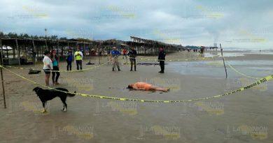 ¡Viene a la playa Barra Norte y encuentra la muerte!