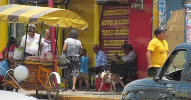 En marcha control de población canina en Naranjos