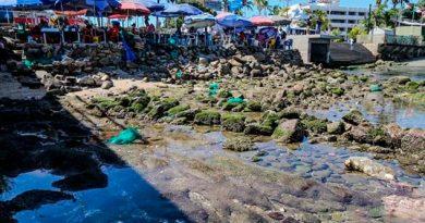 Mar se aleja varios metros de las playas de Acapulco