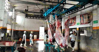 A la alza sacrificios en rastro municipal de Tuxpan