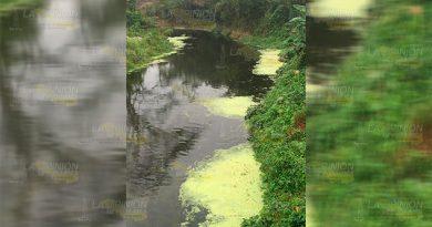 Arroyo en Poza Verde se convirtió en basurero clandestino